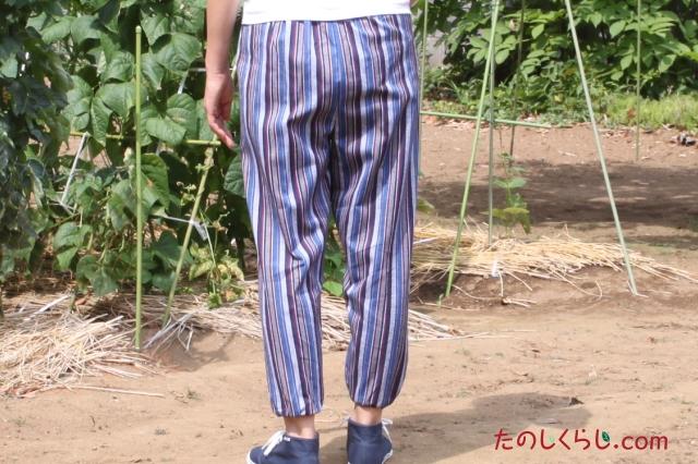 純綿かつお縞もんぺ 女性用 日本製 後